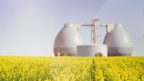 Production of biofuels